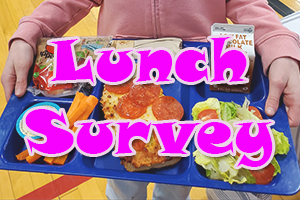 Lunch Survey